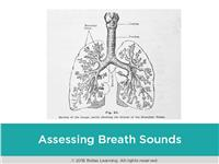 Rapid Review: Assessing Breath Sounds